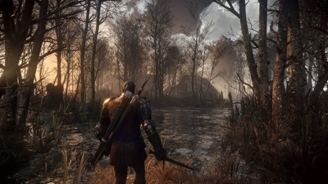 Witcher 3 Wild Hunt 37