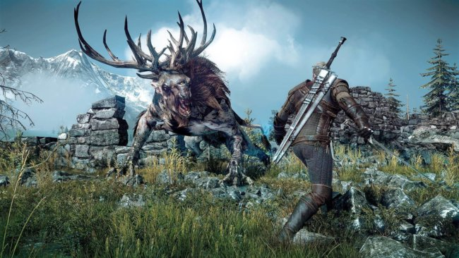 Witcher 3 Wild Hunt 38