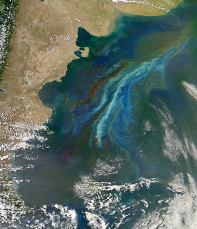 Плотные облака над океанами формируются благодаря планктону