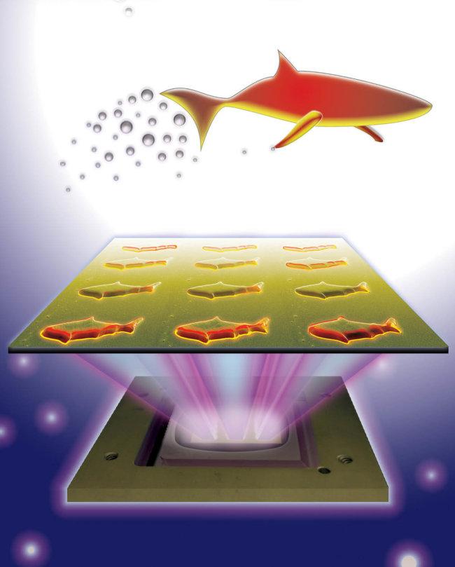microfish-bloodstream-2015-08-27-02