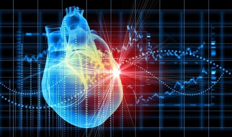 Учёные разработали «заплатку» для повреждённого сердца