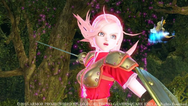 Dragon Quest Heroes 11