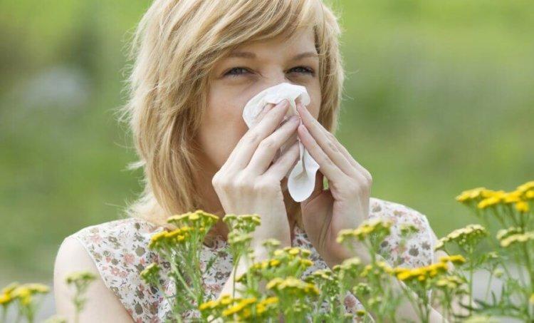 alergija-60936517