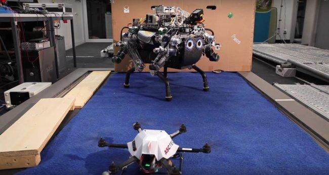 drone-dog