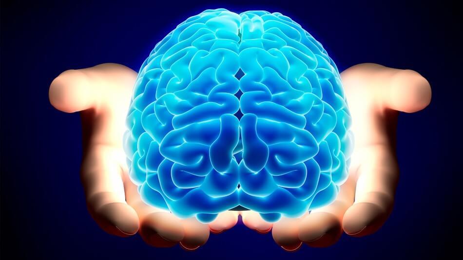 Наш мозг может хранить 1 петабайт данных – это почти весь интернет