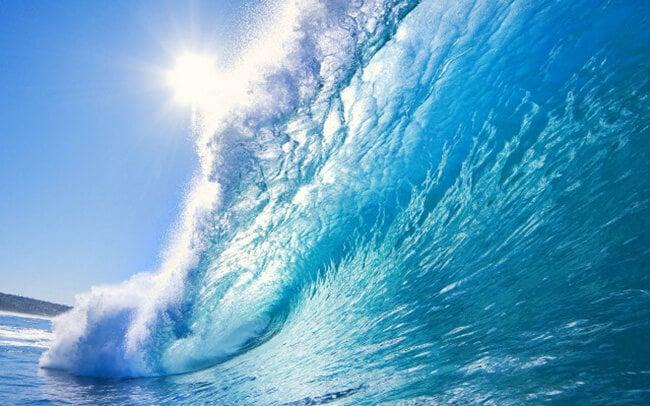 скачать океан торрент