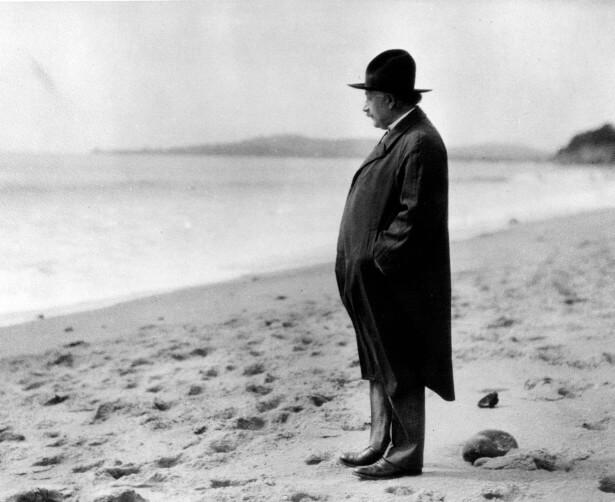 Эйнштейн на пляже