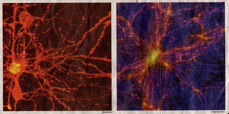 Мозг или Вселенная?