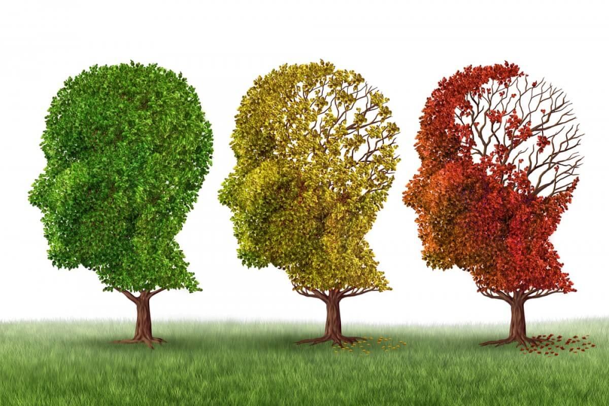 Куда деваются воспоминания при болезни Альцгеймера