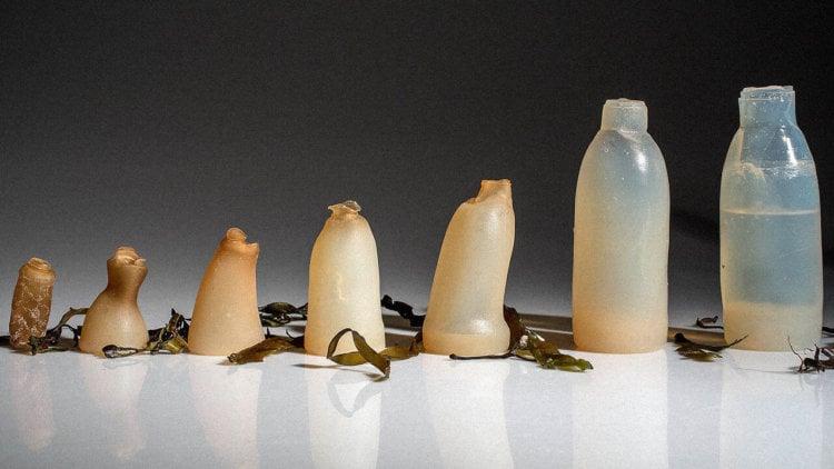 Бутылка из водорослей может решить одну из проблем экологии