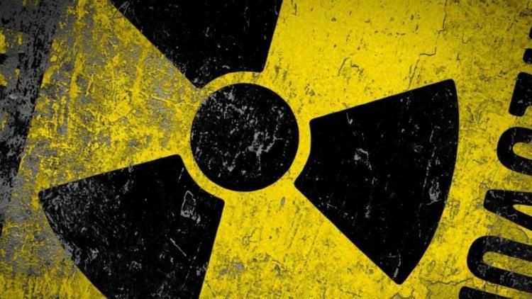 Чернобыль 30 лет спустя: фауна в зоне отчуждения