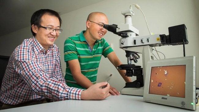 Larry Lu и Jiong Yang