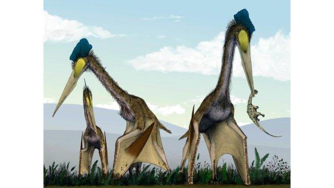 Птерозавры