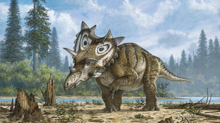 В Юте найден скелет неизвестного рогатого динозавра