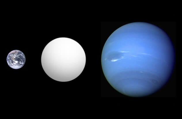 Нептуны