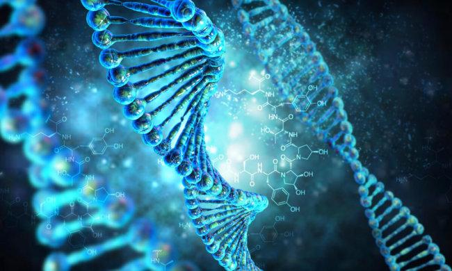 Человеческий геном: от чтения к написанию