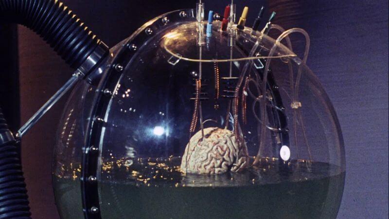 Мозг в чане