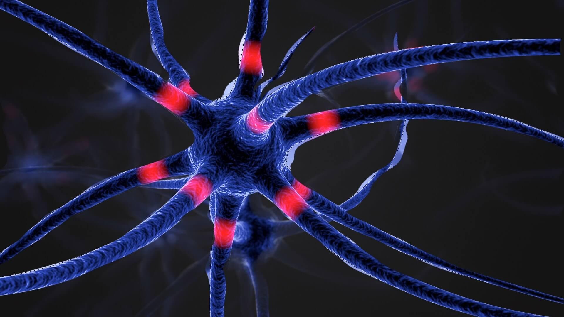Учёные нашли новый способ борьбы с нейродегенеративными заболеваниями