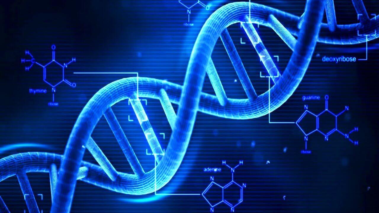 Однажды мы сможем закодировать всю информацию мира в нескольких литрах ДНК