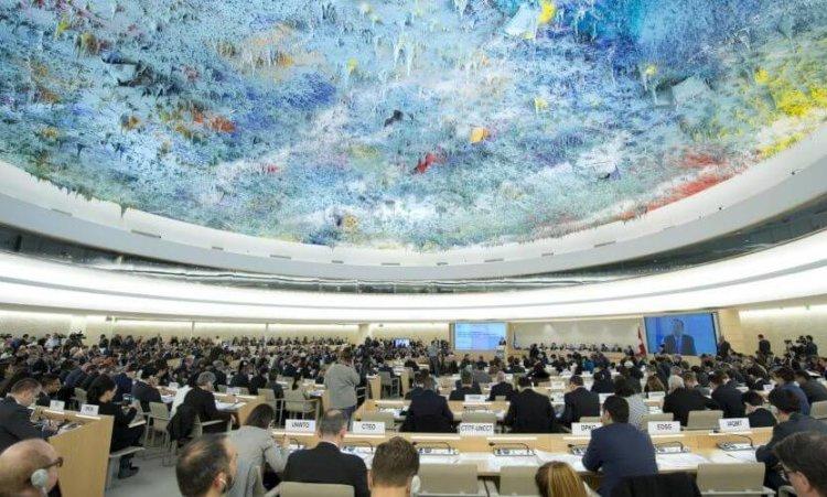 Доступ в Интернет стал одним из неотъемлемых прав человека