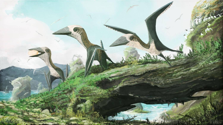 учёные открыли вид миниатюрных крылатых динозавров