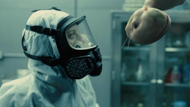 В США хотят снять мораторий на создание гибридов человека и животных
