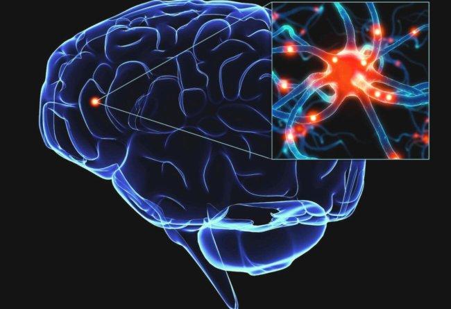 Болезнь Паркинсона можно выявить до симптомов