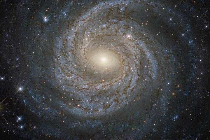 Физики сообщили об открытии пятой силы