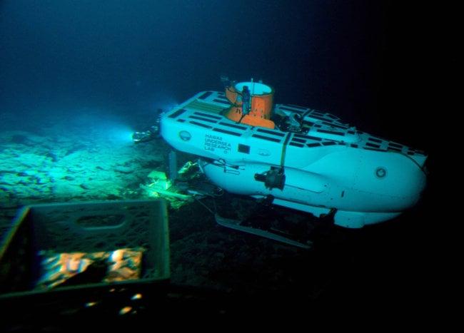 Американские исследователи обнаружили в глубоководном вулкане Кука новые виды