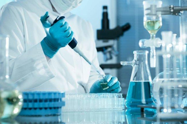 Ученые из России научились искусственные выращивать клетки