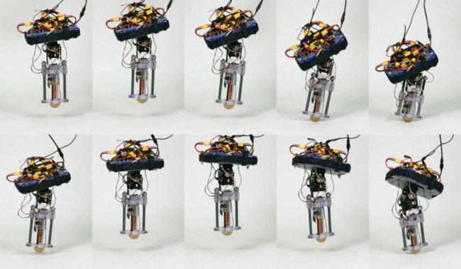 DISNEY тестирует однополого робота