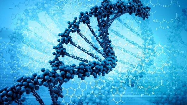 К 2026 планируется записать человеческий геном