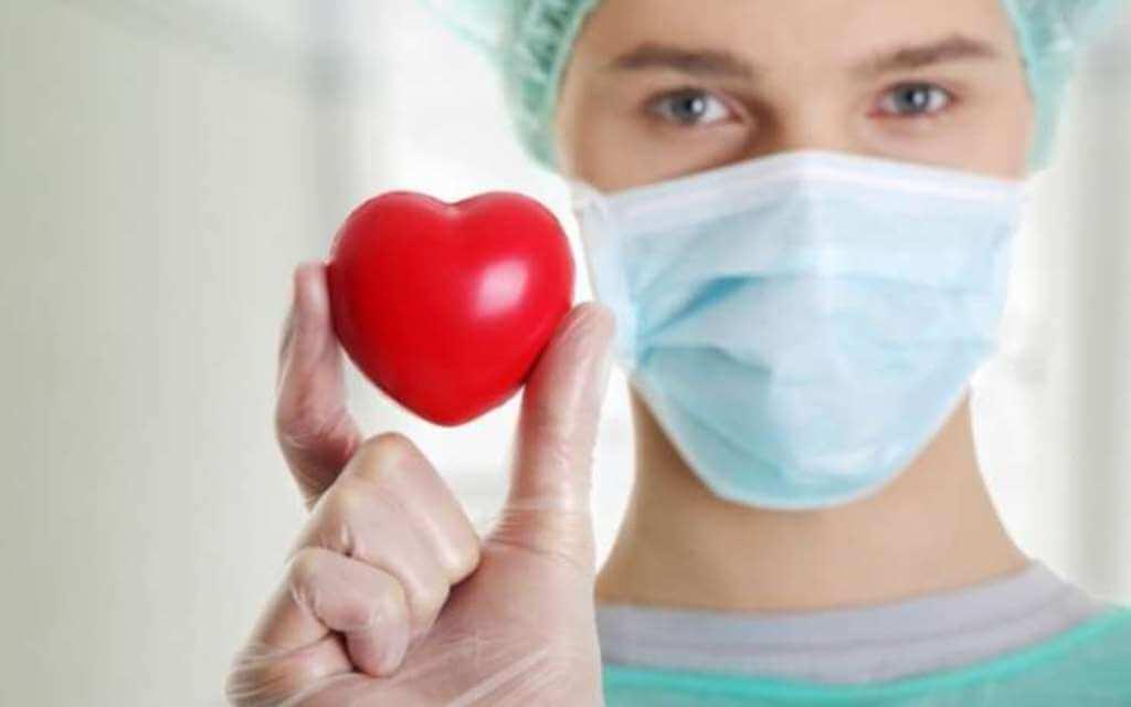 Обнаружен ,белок сдерживающий чрезмерный рост сердца