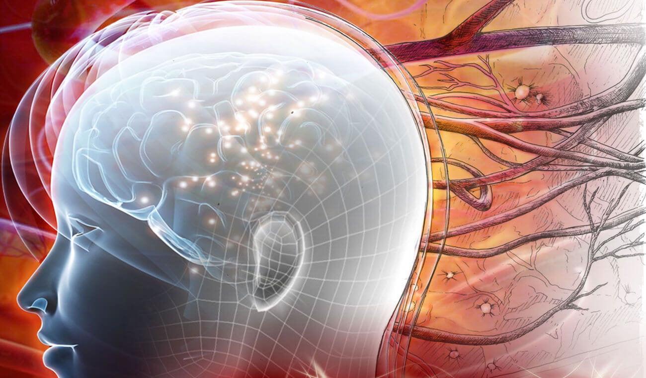 Нейроны могут заменить области головного мозга