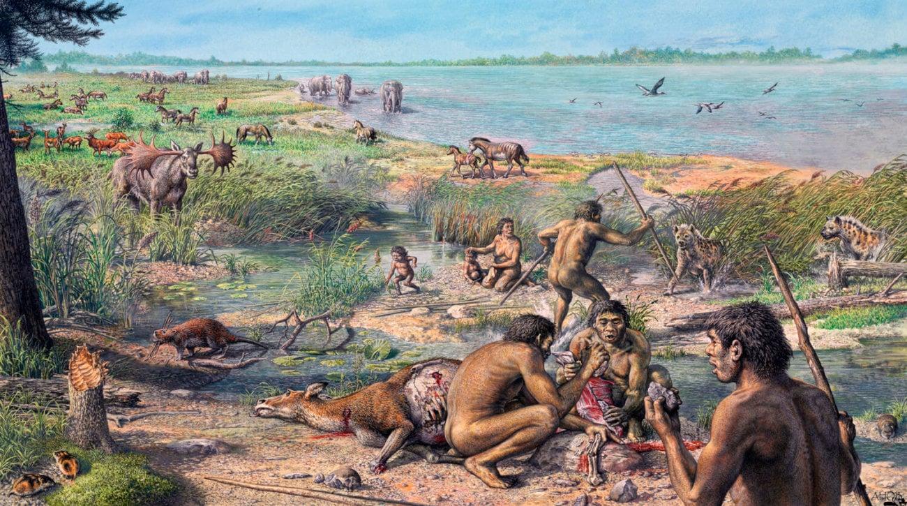 Археологи узнали, чем питались древние предки человека
