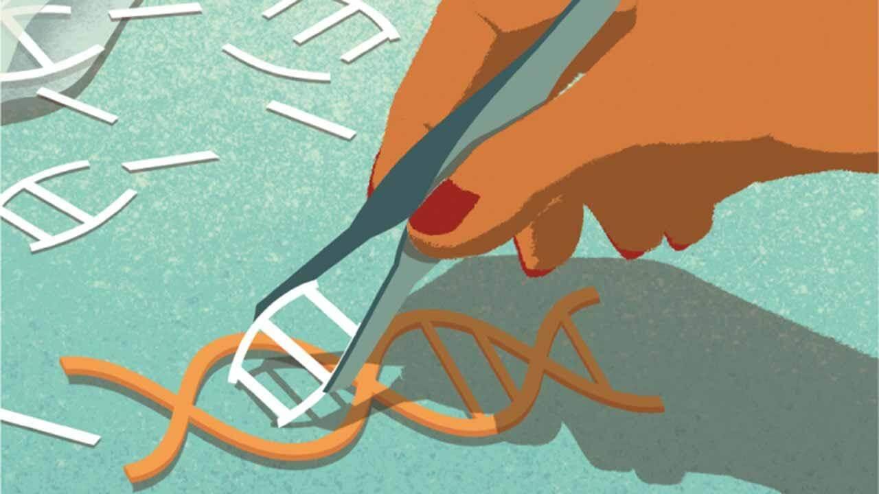 5 загадок, касающихся происхождения CRISPR