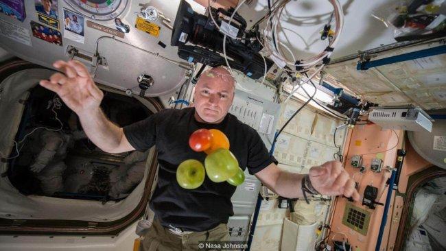 На что похож обычный день космонавта на орбите?