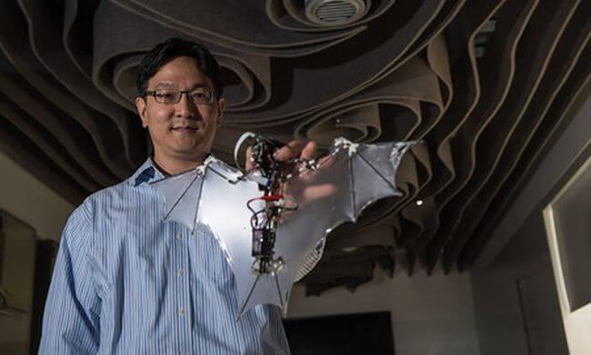 Американским инженерам удалось создать робота-летучую мышь (2 фото + видео)