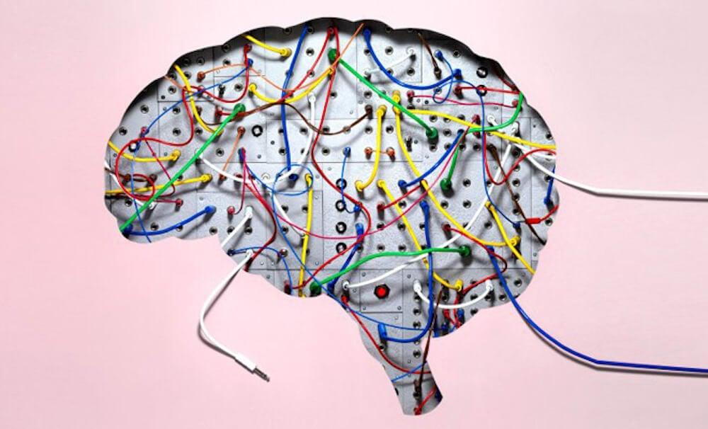 Картинки по запросу волокно в мозг