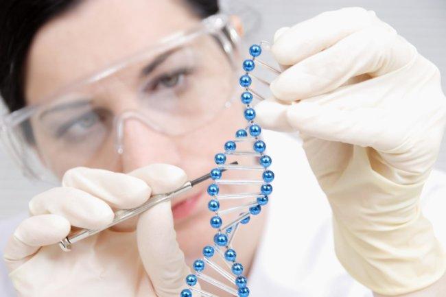 Ученые впервый раз предотвратили слепоту умыши при помощи генной терапии