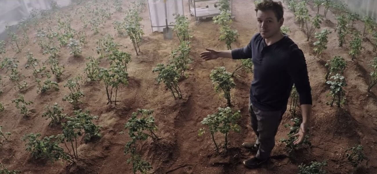 Перуанские ученые вырастили картофель в «марсоподобных» условиях