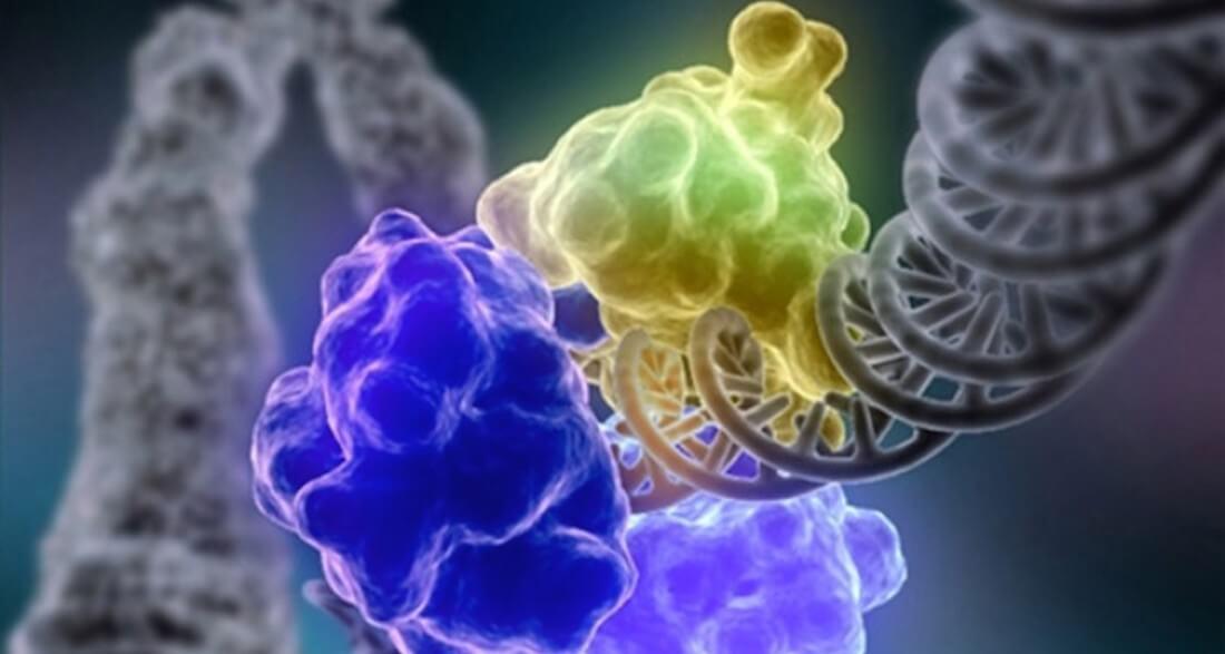 Ученые испытали наноточки, которые помогут влечении рака