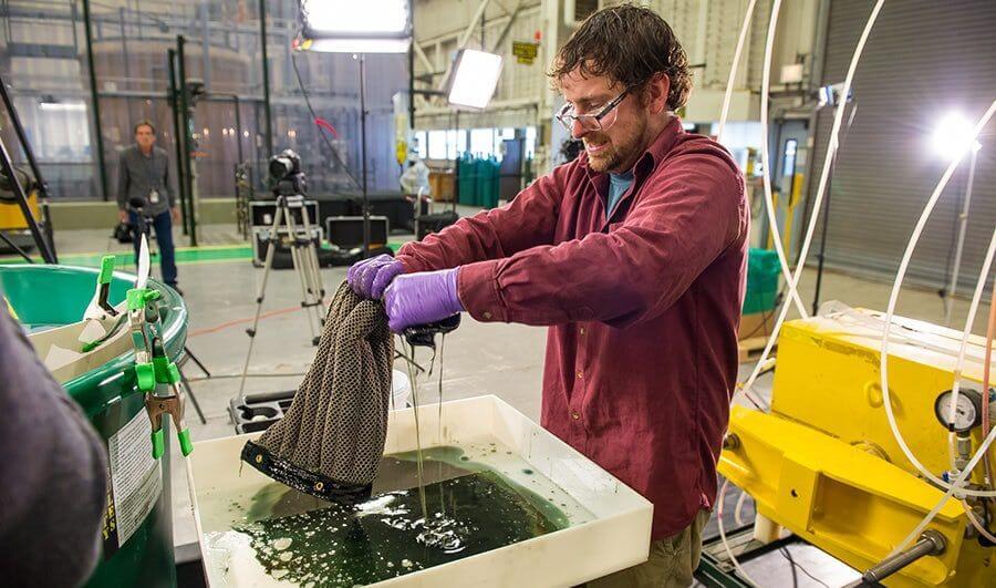 Создана губка, способная очистить океан от нефти и нефтепродуктов