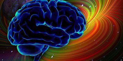 Neuralink Илона Маска. Часть вторая: мозг