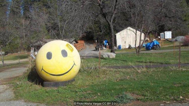 Есть 19 типов улыбок, и только 6 — счастливых (9 фото)