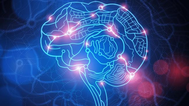 Корень интеллекта может быть заключен в одном уравнении