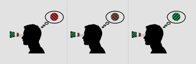 [Bild: binocular_rivalry-650x212.jpg]