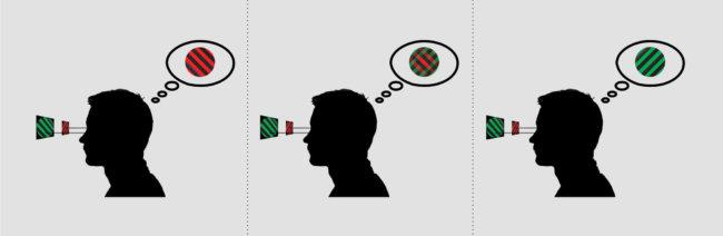 [Image: binocular_rivalry-650x212.jpg]