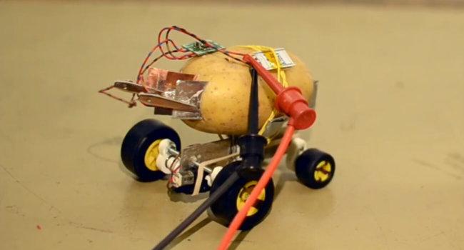 Житель Польши построил самоуправляемого робота из картофелины