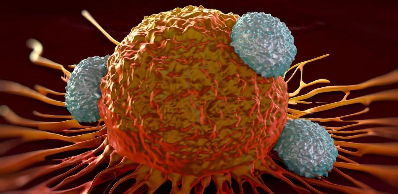 При помощи иммунотерапии удалось победить самый агрессивный тип рака груди